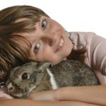 ペットとしてウサギは超優秀!イヌネコに負けないその魅力は?